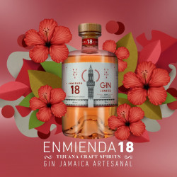 Ginebra Jamaica 750ml